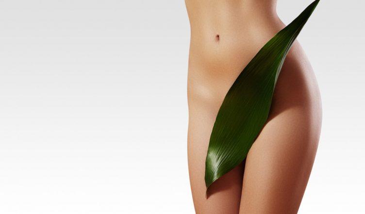 O que é vulva? Conheça essa parte importante do corpo da mulher