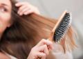 Por que o cabelo cai? Entenda o ciclo de vida capilar